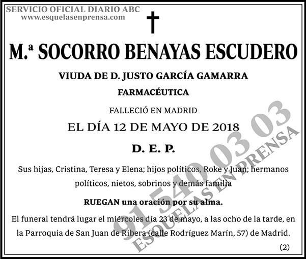 M.ª Socorro Benayas Escudero